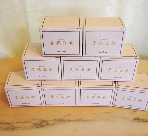 dnaleap-soap